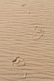 Den mänskliga foten på sanden 7 Royaltyfri Foto