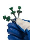 Den mänskliga handen i en handske rymmer blåa skruvar för ett tak, wood skruvar Royaltyfria Foton