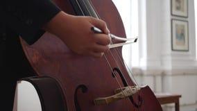 Den mänskliga handen spelar på musikinstrumentet, närbild av en kontrabas med en pilbåge arkivfilmer