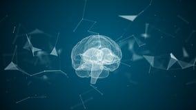 Den mänskliga hjärnan bildas, genom att rotera partiklar stock video