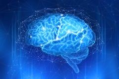 Den mänskliga hjärnan omges av ett nätverk av polygoner på ett mörkt - blå bakgrund arkivfoto