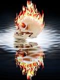Den mänskliga skallebränningen i branden Royaltyfri Fotografi