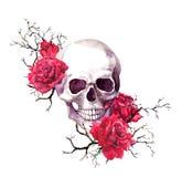 Den mänskliga skallen i filialer, den röda rosen blommar Vattenfärg för allhelgonaafton arkivbild