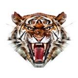 Den målade färgståenden av en tiger tystar ned på en vit bakgrund vektor illustrationer