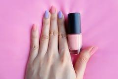 Den målade rosa färgen spikar Härliga rosa färger spikar manikyr med rosa färgflaskan i kvinna är handen på rosa bakgrund Royaltyfri Fotografi