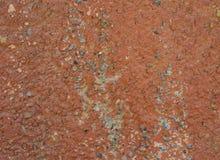 Den målade stenväggen Royaltyfri Foto