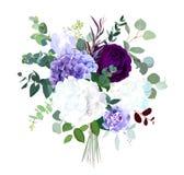 Den mörka lilaträdgården den steg, vita och lila vanliga hortensian, den violetta irins, royaltyfri illustrationer
