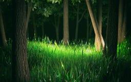 Den mörka skogen 3d framför royaltyfria bilder