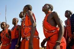 Den Maasai krigaren utför dans i deras traditionella kläder och smycken Arkivbild