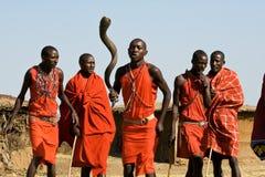 Den Maasai krigaren utför dans i deras traditionella kläder och smycken Royaltyfri Foto