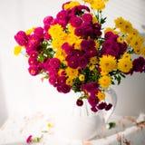 Den magentafärgade och gula krysantemumet blommar i vas Arkivbilder