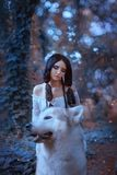 Den magiska fen sadlar den stolta vargen av skogen och rider honom, rovdjur tar älvaprinsessan till hennes lya, nytt möte royaltyfri bild