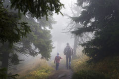 Den magiska skogen går Fotografering för Bildbyråer