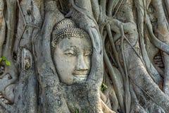 Den Mahathat templet i den historiska polisdistriktet av Sukhothai parkerar royaltyfri bild