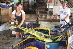 Den Mahi-mahi dolphinfishen sålde i Santa Cruz den offentliga marknaden, den Mindoro ön, Filippinerna Royaltyfri Foto