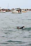 Den Male simmaren gör ryggsim Amid att festa för fartyg arkivbilder