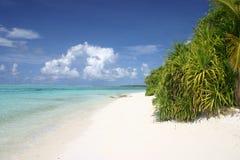 Den Maledives ön gömma i handflatan Palme Fotografering för Bildbyråer