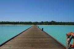 Den Maledives ön gömma i handflatan Palme Arkivfoton