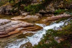 Den Maligne kanjonen i Jasper National Park Royaltyfri Fotografi