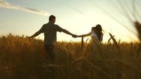 Den mammaungen och farsan som rymmer händer, går på ett vetefält den faderdottern och modern spelar på fältet l?ngsamt stock video