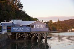 Den Mangonui hamnen, fisk shoppar på den soliga sommarmorgonen, Nya Zeeland Royaltyfri Foto