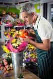 Den manliga blomsterhandlaren som bevattnar blommor med att bevattna kan Fotografering för Bildbyråer