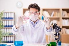 Den manliga doktorn som arbetar i labbet på virusvaccin Arkivbild