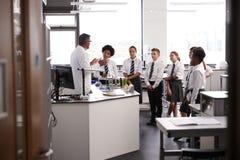Den manliga högstadiet handleder Teaching High School studenter som bär likformig i vetenskapsgrupp arkivbild