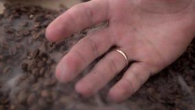 Den manliga handen i långsam effekt är säkert en grupp av läckra kaffebönor som ligger i en ljus ogenomskinlighet arkivfilmer