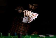 Den manliga pokerspelaren rymmer fem kort, vinnande kombination På en mörk bakgrund Arkivbilder