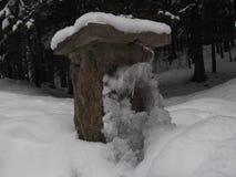 Den masoned stenen dricka springbrunnen Arkivfoton
