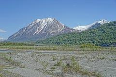 Den Matanuska floden torkade upp med konungen Mountain i avståndet, Alaska royaltyfri foto