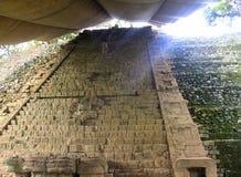 Den Mayan kungliga bloodlinen kliver, Copan fördärvar, Honduras Arkivbilder