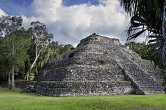 den mayan pyramiden fördärvar Fotografering för Bildbyråer