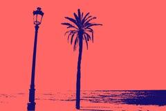 den medelhavs- corsica ön gömma i handflatan den fotografi tagna treen arkivbild