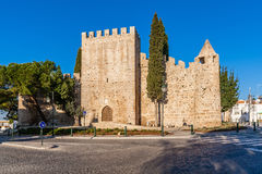 Den medeltida slotten av Alter gör Chao, i Portalegren Royaltyfria Foton