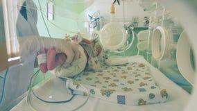Den medicinska arbetaren tar ett nyfött behandla som ett barn, stänger sig upp stock video