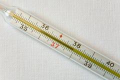 Den medicinska termometern visar högstämd kroppstemperatur royaltyfri foto