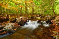 Den mellersta nedgången på Delaware bevattnar Gap Royaltyfria Bilder