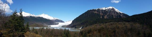 Den Mendenhall glaciären parkerar Arkivfoton