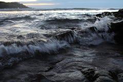 Den mest lösa formen av naturen fotografering för bildbyråer