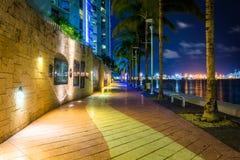 Den Miami flodstranden på natten, i i stadens centrum Miami, Florida Arkivfoto