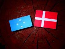 Den Micronesian flaggan med danska sjunker på en isolerad trädstubbe royaltyfria foton