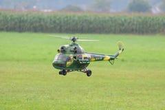 Den militära helikoptern - helikopter - armén - modellera helikoptern Royaltyfri Bild