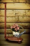 Den mini- antika sparkcykeln och att bevattna kan Royaltyfri Foto