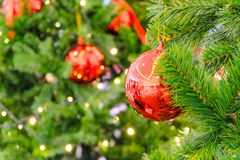 Den mjuka fokusen av röda chrismas klumpa ihop sig fejkar på julträdet och blurr Fotografering för Bildbyråer