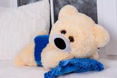 Den mjuka nallebjörnen leker med blått royaltyfri bild