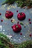 Den moderiktiga moussekakan med bärglasyr dekorerade med tranbäret för marängar för granträdet Söt sammansättning för ferie av ef Royaltyfri Fotografi