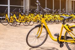 Den moderna gula cykeln för hyra med många samma gula cyklar står fotografering för bildbyråer