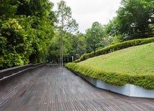 Den moderna träbron över djungeln parkerar Arkivbild